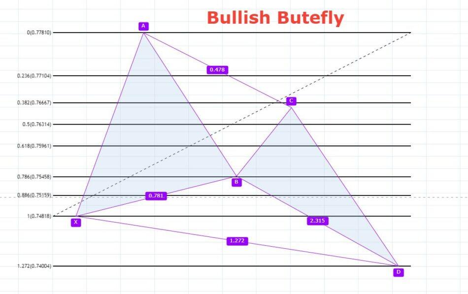 foramacja hatoniczna motyla